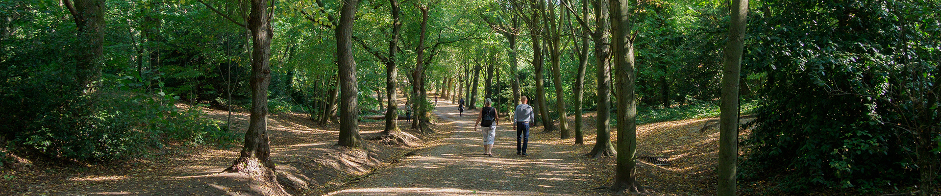 Learn more about Hampstead Garden Suburb with our Area Guide